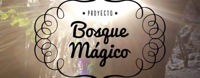 El proyecto Bosque Mágicosurgecomo iniciativa de algunos escaladores de Santiago, preocupados por el rápido deterioro y la falta de conciencia entre los visitantes del clásico […]