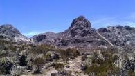El Pico Mucumpisito se encuentra a 4500 msnm aproximadamente, lo cual garantiza una escalada peculiar y única, requiere de un poco de adaptación climática y […]
